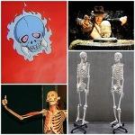 100만년 넘게 존재할 수 있는 뼈 이야기