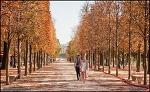 파리의 가을
