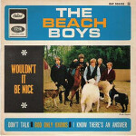 The Beach Boys _ Wouldn't it be nice