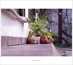 #02. 수원 행궁동벽화마을