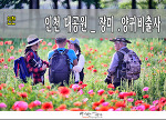 인천대공원 출사