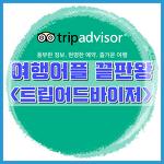[여행어플 끝판왕] 트립어드바이저 : 해외호텔비교, 관광지, 음식점 정보를 한번에!