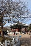 [부산여행] 남포동 용두산 공원의 소소한 하루