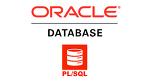 개발자를 위해 제대로 만든 PL/SQL 서적!