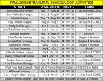Intramural Sports – 진정한 미국 스포츠의 근원지