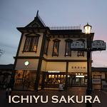 오쿠도고 이치유노모리 레스토랑 사쿠라노마 석식&조식   마쓰야마 도고온천호텔