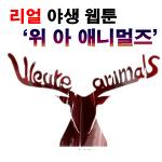 각양각색 동물들이 펼치는 옴니버스 리얼 야생 감동 웹툰 추천