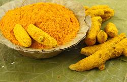브레인푸드 커리 (Curry)