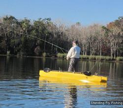 스탠딩 피싱 Standing Fishing