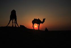 자이살메르 사막