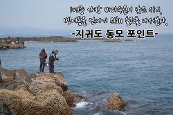 영등철 제주도 벵에돔낚시 조행기 -지귀도 동모포인트-