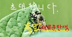 블로그 개설 초대장 배포
