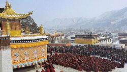 """10대 티벳인 학생, """"티벳은 자유를 원한다"""" ··· 올해 3명째 분신"""