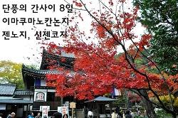단풍의 간사이 - 8일 교토 라쿠난5 (젠노지善能寺·이마쿠마노칸논지今熊野観音寺·신젠코지新善光寺)