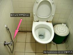 우리 부부가 여행한 나라의 공중화장실 체험담