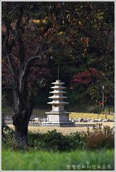 충남 서산 보원사지오층석탑
