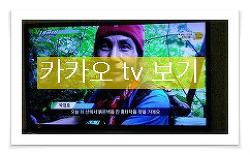 산원초 산삼 채취 장면 및 약초 관령 동영상 카카오 tv 보기 (산원초)