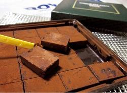 로이스 초콜렛 일본여행선물 인기 생초콜릿 직구