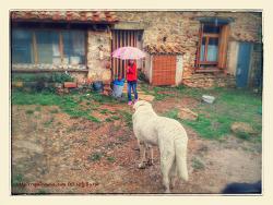 비가 안 오면, 물값을 내야 하는 스페인 고산 생활