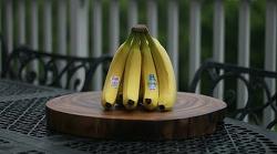 알쓸신잡. 바나나 보관법