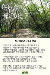 [카드뉴스] 아름다운 숲을 소개합니다_숲길 이야기