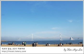[적묘의 부산]광안대교가 사라진 광안리 풍경,해무의 원인, 봄소식은 바다안개