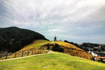 봄의 낭만이 가득한 거제도 바람의 언덕