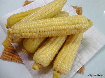 큰 솥 없을때 옥수수 삶는 방법, 옥수수 맛있게 찌는법