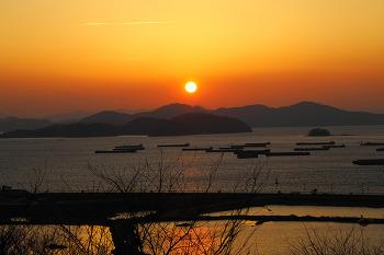 미리찾은 새로운  벚꽃명소! 진해 '벚꽃 공원'의 아름다운 일몰!(창원명소/진해명소/벚꽃명소)