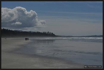[밴쿠버 아일랜드] 퍼시픽 림 국립공원 – 롱 비치