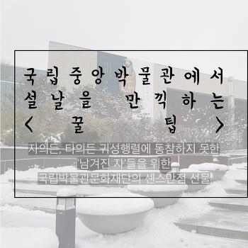 """[카드뉴스] 국립중앙박물관에서 설날을 만끽하는 """"꿀 팁"""""""