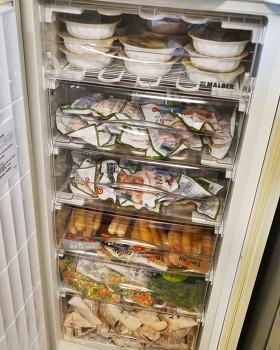 다이어트 식단 전용 냉동고