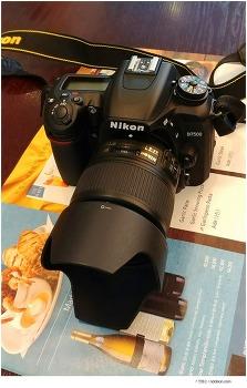 DSLR 입문카메라 : 재미있는 토이효과를 줄 수 있는 일상스냅, 니콘 D7500