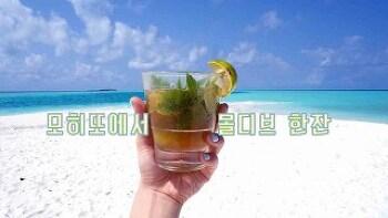 몰디브 배낭여행 섬