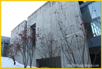 <강원도 가볼만한 곳> 박수근 미술관 : 아름다운 미술관