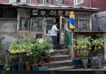 서울시마포구효창원로 / 공덕동 / 성우이용원 / 서울미래유산 / 이발관