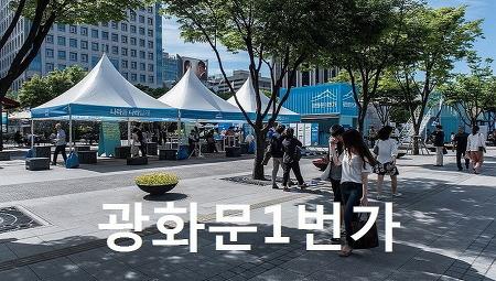 광화문1번가 국민인수위원회 보고대회
