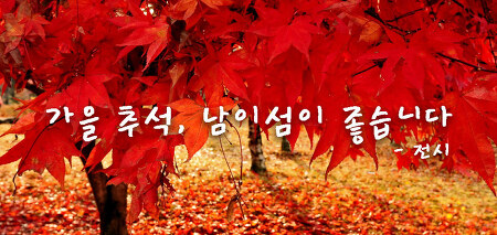 [남이섬/추석/전시] 가을 추석, 남이섬이 좋습니다 – 전시