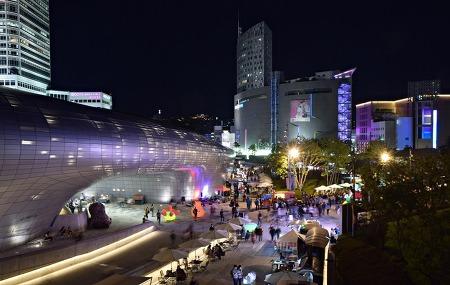 지금 가면 딱 좋은 서울 밤 도깨비 야시장 (동대문DDP)