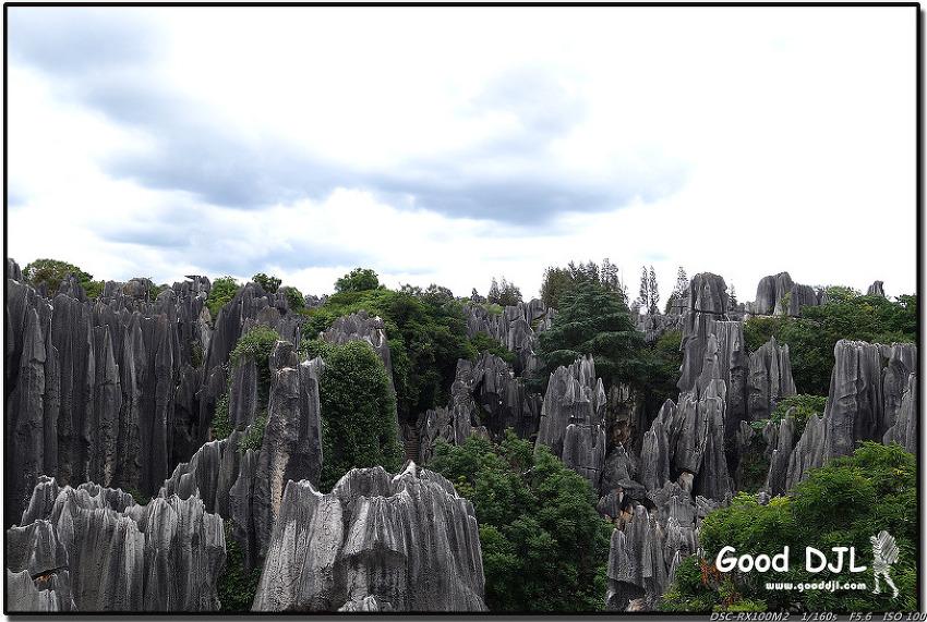 두 형제의 중국 여행기 - 22. 돌로 만들어진 숲, 석림 여행 (중국 - 쿤밍)