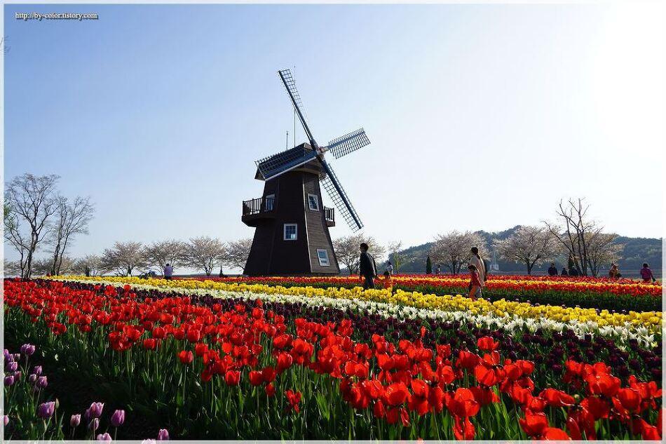 순천만 국가정원 봄꽃축제