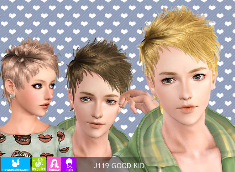 Objnoora Newsea Sims3 Hair J119 Goodkid