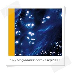 n_The_Moonlight-ssey2000.jp