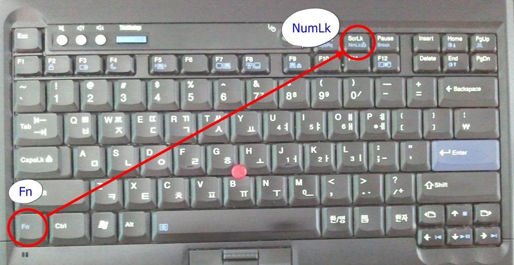노트북 키보드 누르면 숫자로 나올때 해결 방법