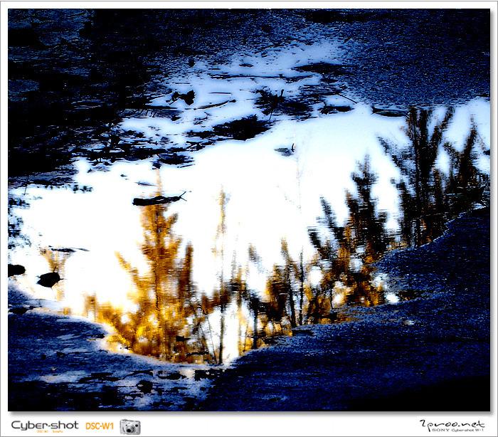갑천 풍경 사진