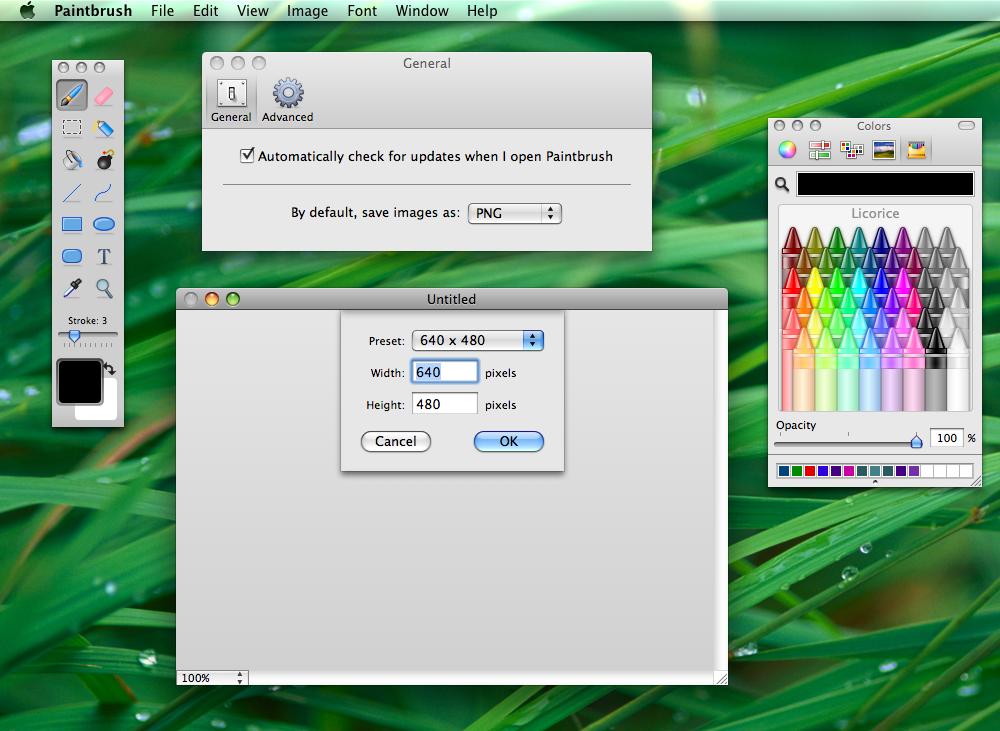 Mac Equivalent Paint Net