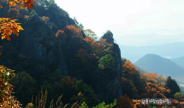 무척산(無隻山) 단풍경관