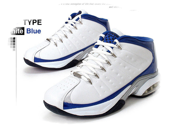 Air Visi Pro Iv Basketball Shoe