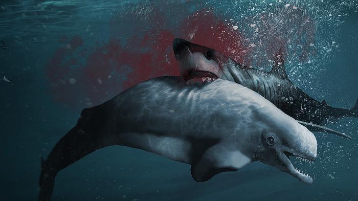 메갈로돈 고래 사냥 Megalodon attacking Whale