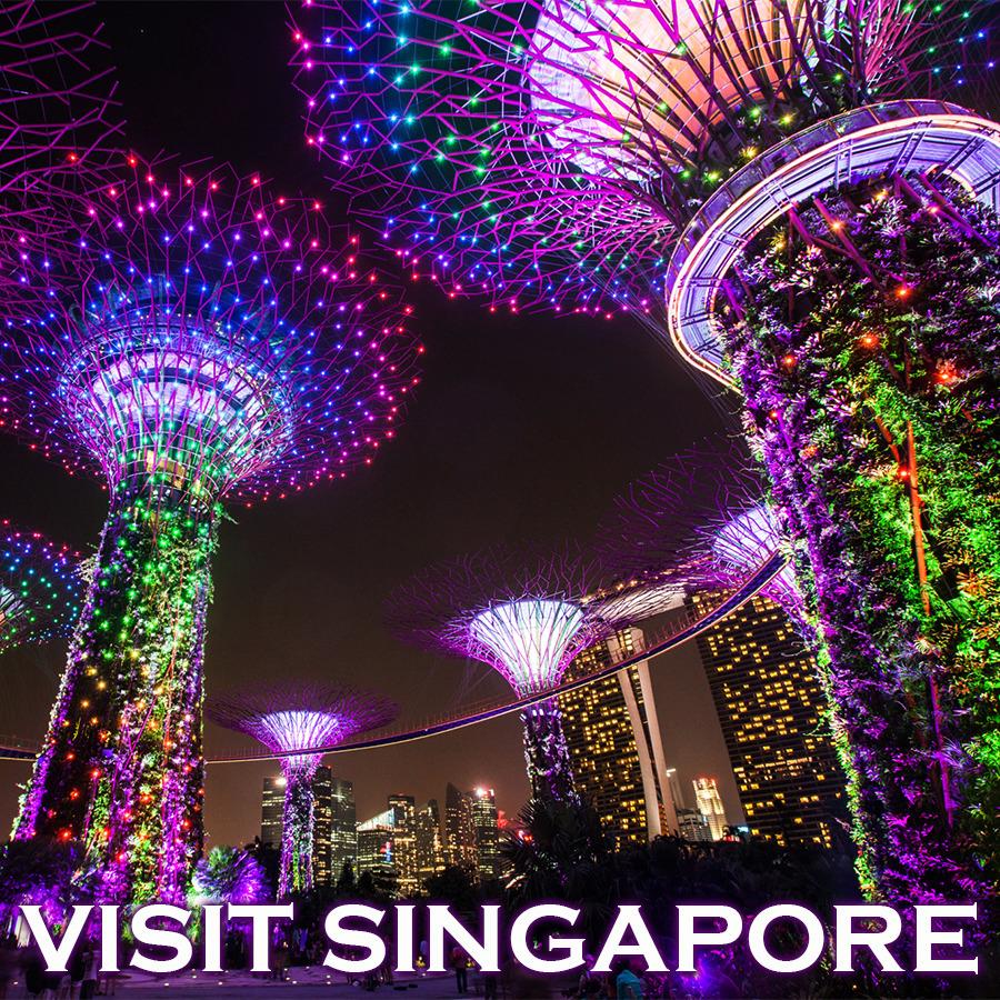 따뜻한 남쪽나라 맛있는 음식의 천국 싱가포르로 떠나는 나만의 미식여행